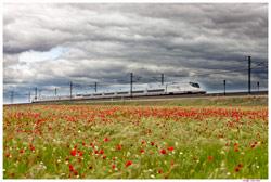 Notícies de la nova flota de RENFE a Espanya 5661_1